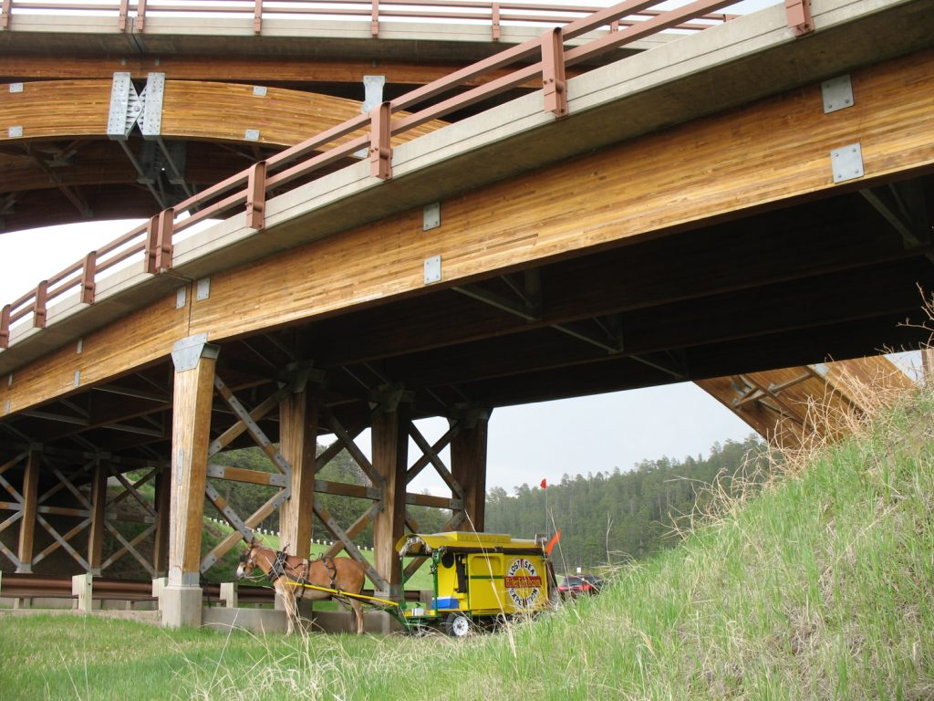 If an interstate spaghetti junction was built of laminated timber beams, this is what it would look like. Sure makes my wagon look small. Here, Polly uses it to duck out a hail storm. (Between Hill City and Rapid City, South Dakota)