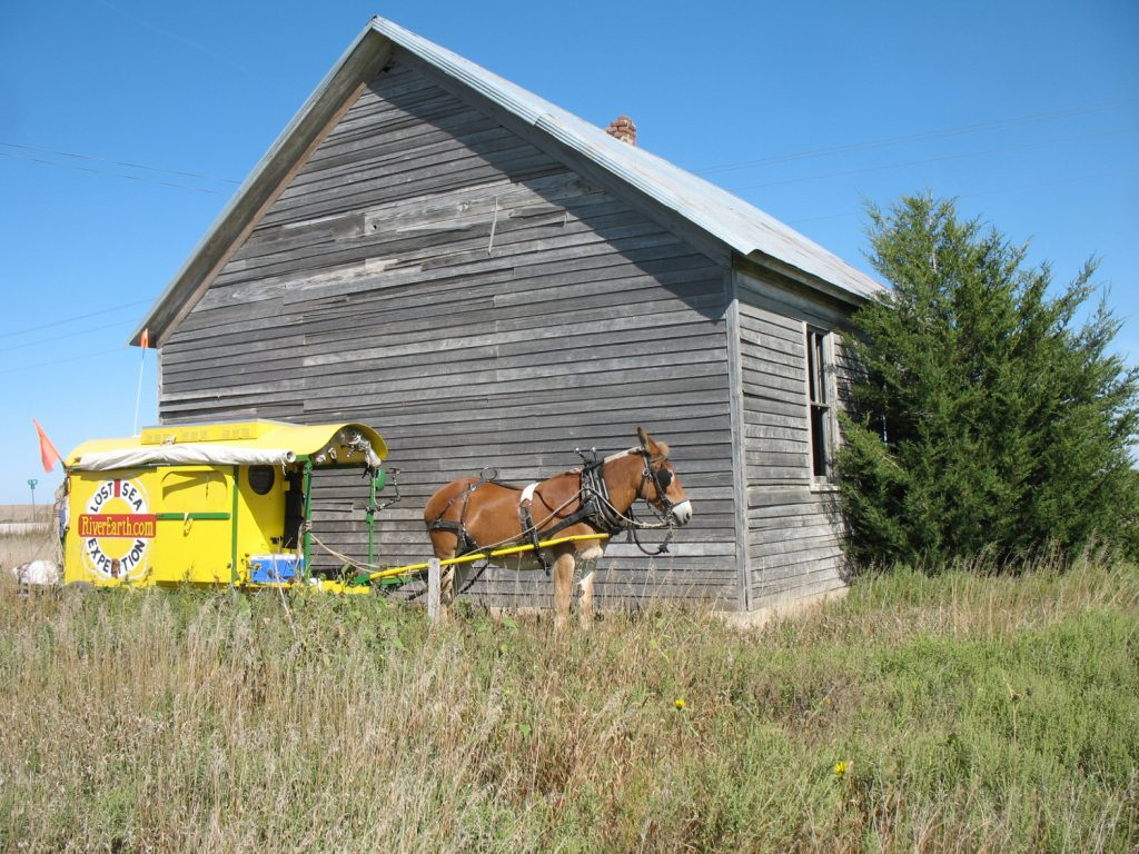 Mule Polly parked in front of a Kansas school house.