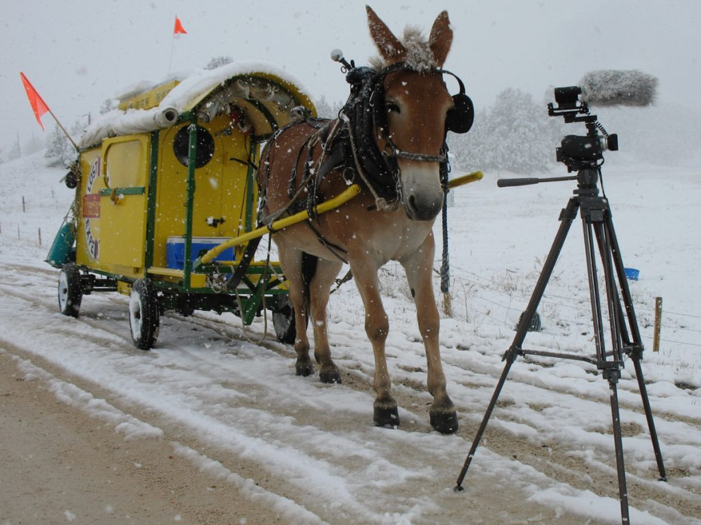 Mule Polly and the Lost Sea Expedition wagon in the snow while filming.