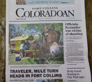 Polly on the cover of the Coloradoan.