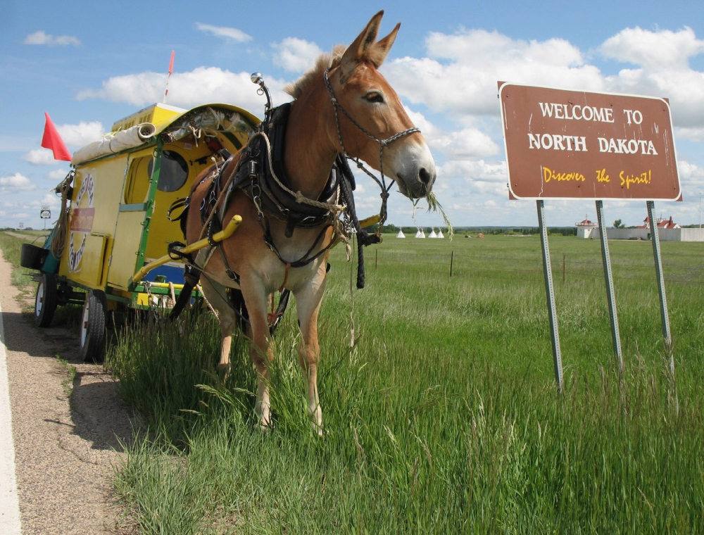 My mule Polly and the Lost Sea Expedition wagon straddle the North Dakota/Montana state line. I built the wagon especially for the voyage.