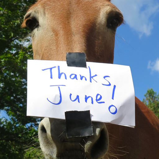 Mule Polly thank you note on her nose.