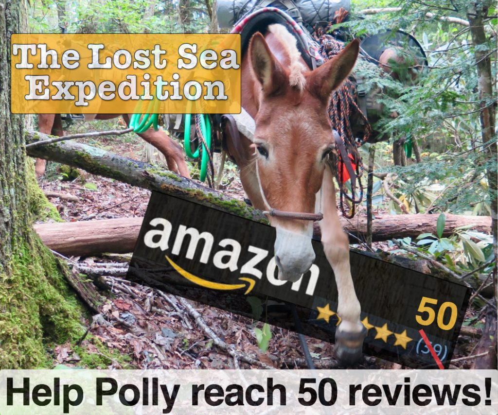 "Please review the ""Lost Sea Expedition"" series"